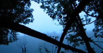 7 дней на Южном Урале: фотоотчёт